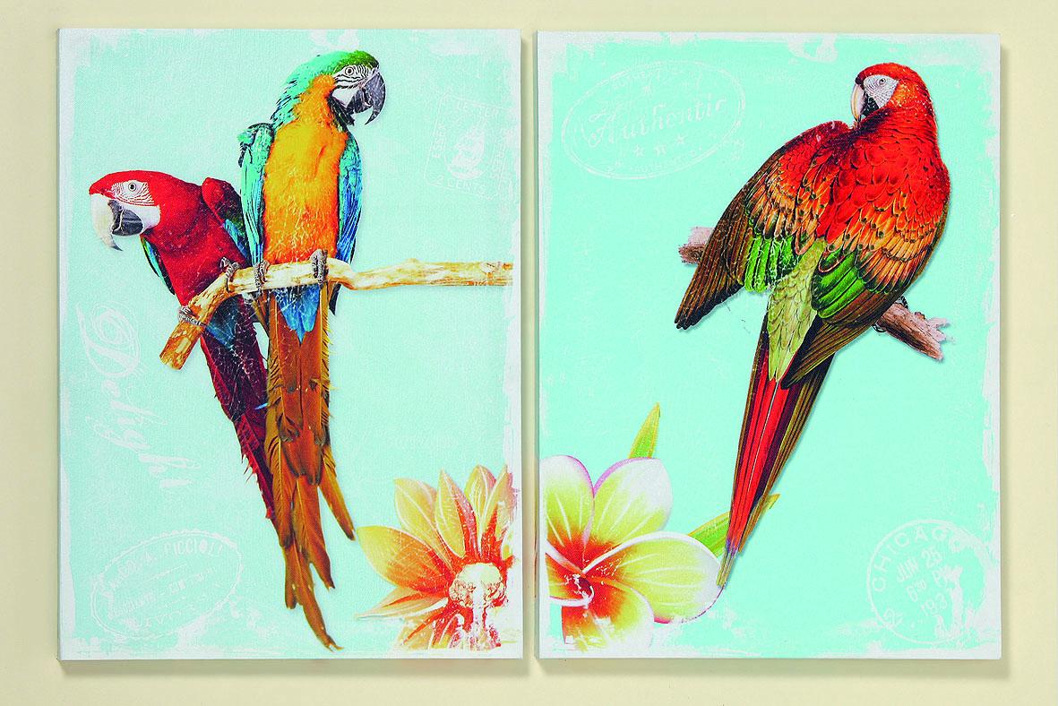 . 2 er Set Wandbilder Papagei je 30 cm x 40 cm Bilder