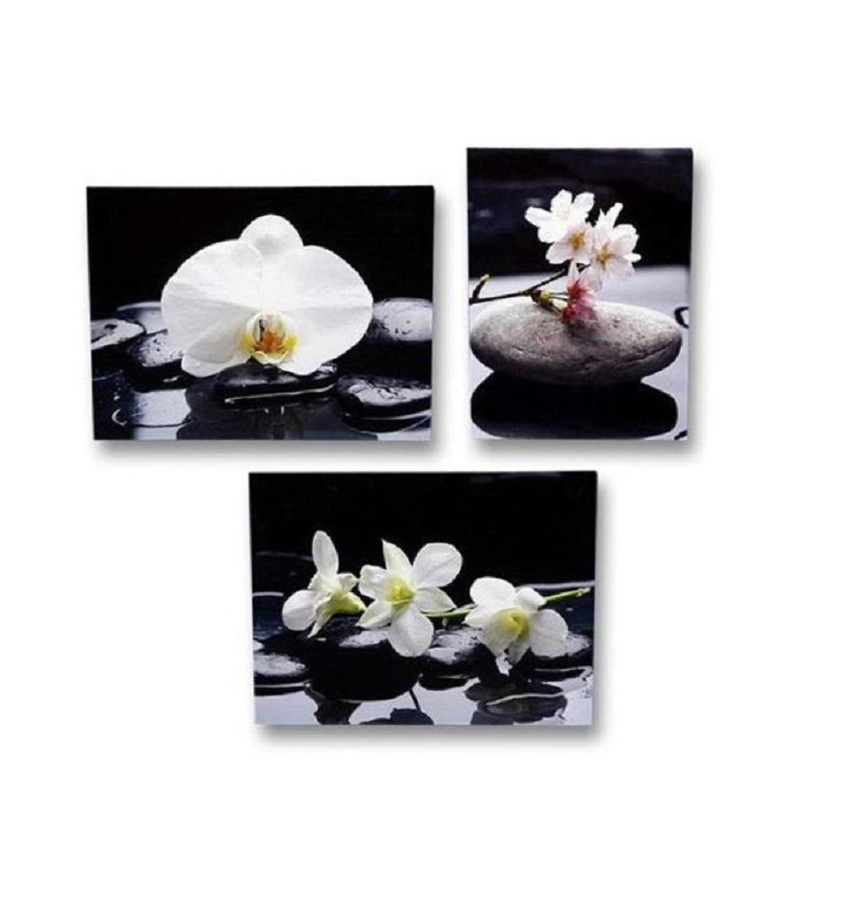 . Wandbild 3- er Set blühende Orchidee Feng Shui Steingarten