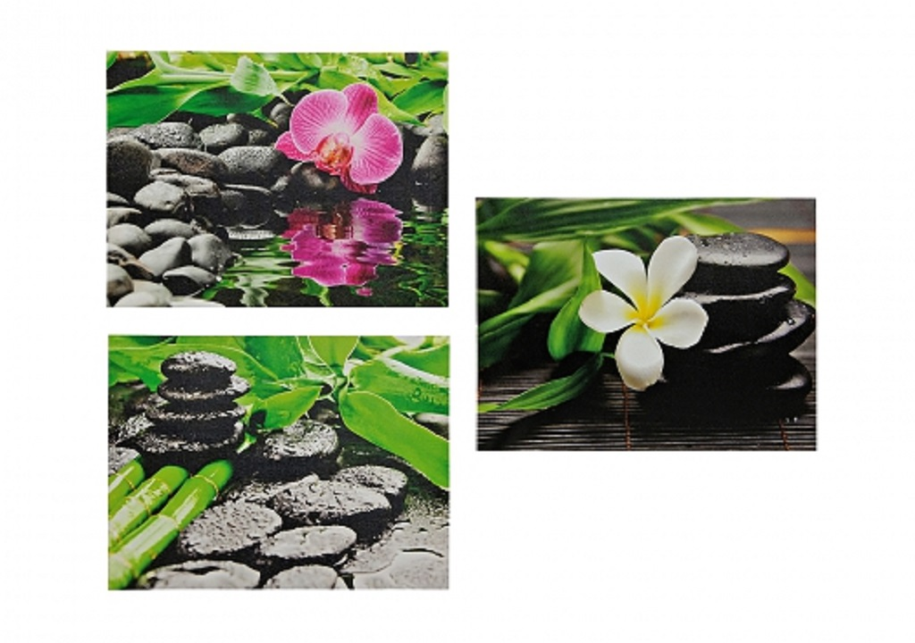 3 er set orchidee steingarten bilder feng shui bambus je 30cm x 40cm ebay. Black Bedroom Furniture Sets. Home Design Ideas
